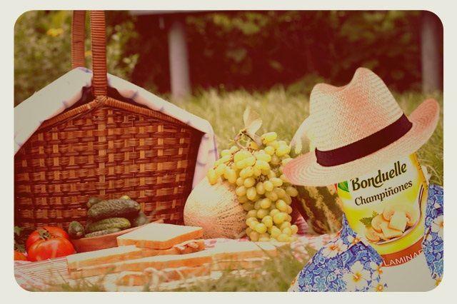 ideas para comer de picnic