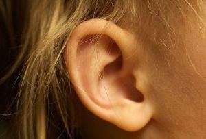 Las orejas también se cuidan