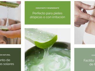 Beneficios Aloe Vera